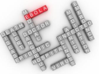 EbolaPuzzle